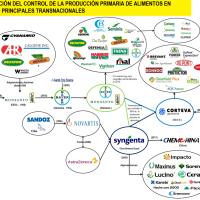 VENEZUELA EN LA GEOPOLÍTICA DE LOS ALIMENTOS II (III PARTE)